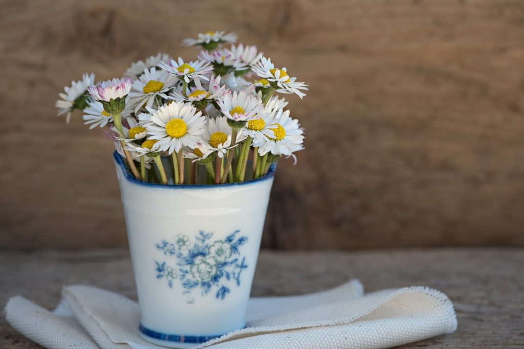 Daisy in a Vase (Minimalist decor)