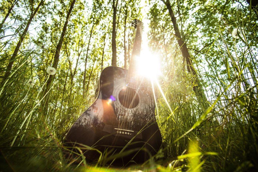 A guitar among nature