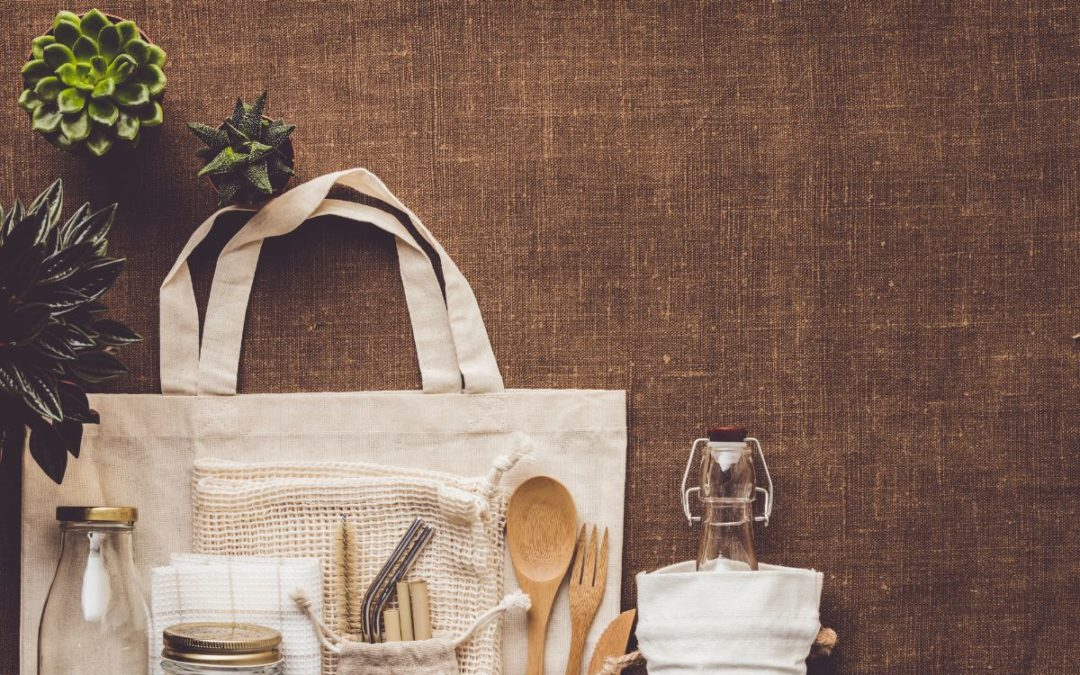 Collection of various succulent plants and Mesh market bag with bamboo cutlery, reusable bottles and eco cotton bags on wooden background. Sustainable lifestyle. Plastic free concept.