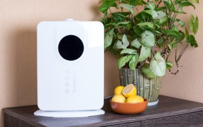 Top 5 Air Purifiers for the Home
