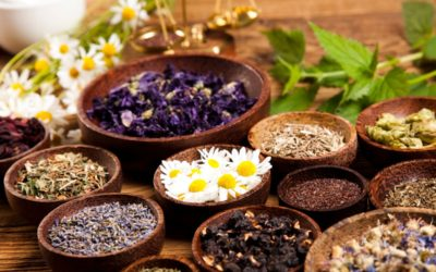 8 Medicinal Herbs and Their Benefits
