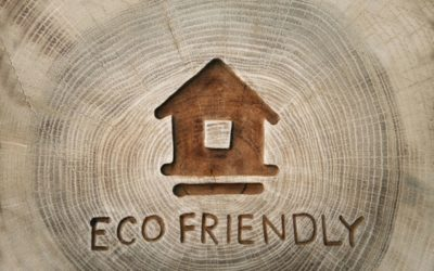 6 Simple Ways to Make Your Home Eco-Friendlier