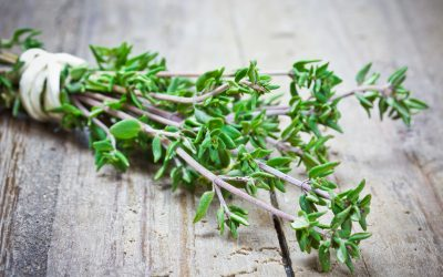 All About Thyme and Its Benefits