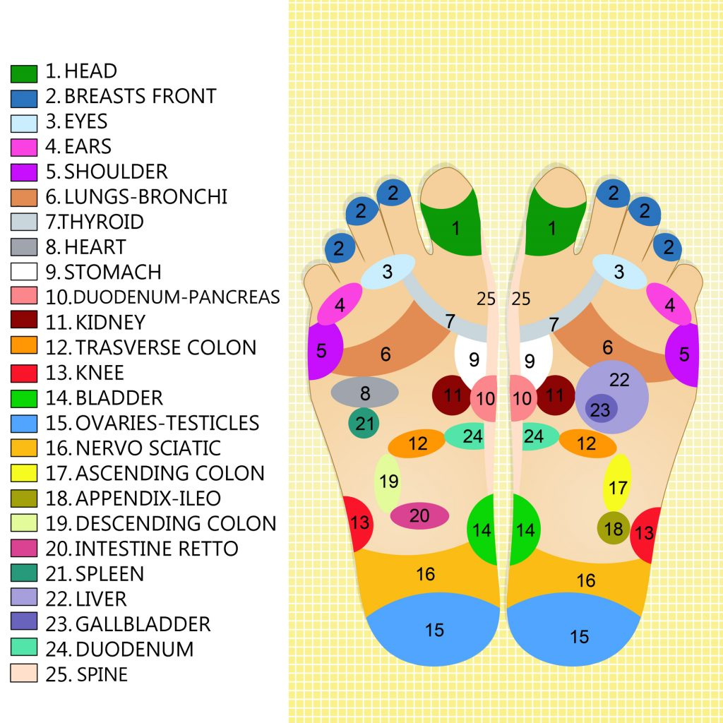 Reflexology points feet